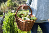 Woman standing in the field, carrying a vegetable crate - GEMF02819