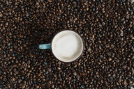 Cup of white coffee between coffee beans - AFVF02380