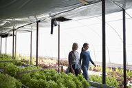Female farmers walking in greenhouse - HEROF20905