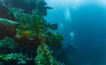 Scuba diver at wreck of USAT Liberty, Tulamben, Bali, Indonesia - ISF20849
