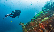 Scuba diver at wreck of USAT Liberty, Tulamben, Bali, Indonesia - ISF20852