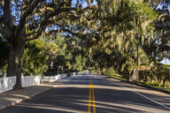 USA, South Carolina, Beaufort, Oak tree alley - RUNF01216