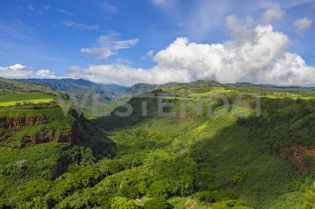 USA; Hawaii, Kauai, Hanapepe Valley, Aerial view - FOF10377