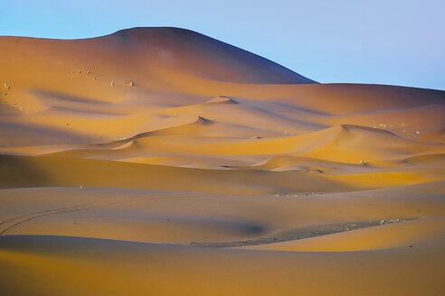Morocco, Dunes of the desert - OCMF00284