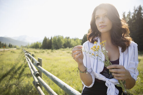 Brunette woman with wildflowers on sunny summer rural fence - HEROF22012