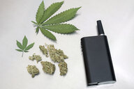 Knolling of marijuana leaves, buds and vaporizer - HEROF22648