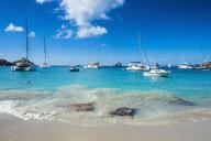 Caribbean, Lesser Antilles, Saint Barthelemy, Gustavia, Luxury yachts - RUNF01261