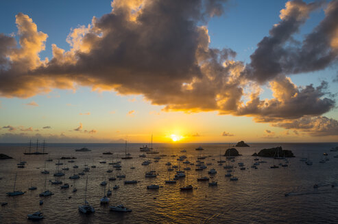 Sunset over the luxury yachts, in the harbour of Gustavia, St Barth or Saint Barthelemy, Greater Antilles - RUNF01270