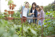 Latina mother and daughters watering plants in vegetable garden - HEROF22904