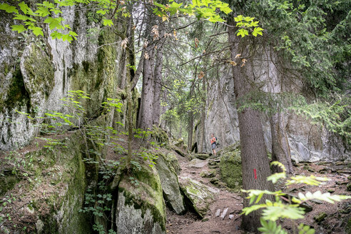 Switzerland, Valais, woman on a hiking trip on the Massaweg in a lush forest - DMOF00123