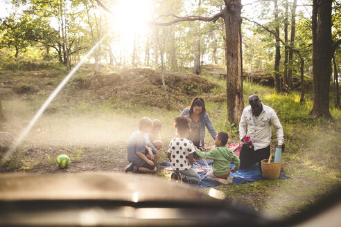Multi-ethnic family enjoying picnic at park - MASF11444