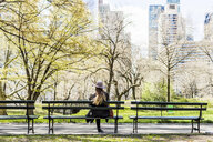 Rear view of woman sitting on bench at Central Park in city - ASTF02862
