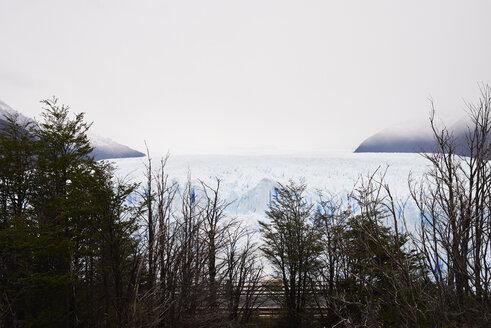 Argentina, Patagonia, view of Perito Moreno Glacier - IGGF00782