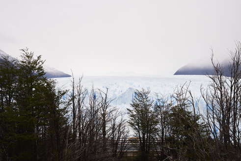 Immensity view of Perito Moreno Glacier, Patagonia, Argentina. - IGGF00782