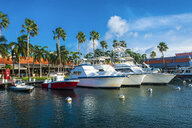 Carribbean, Aruba, Oranjestad, Yacht harbour in downtown - RUNF01364
