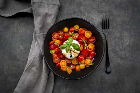 Bowl of tomato salad with burrata - LVF07815