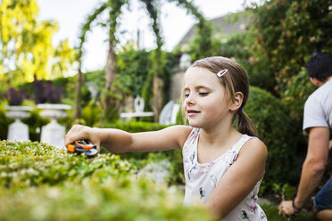 Girl cutting plant with father gardening in background - ASTF04206