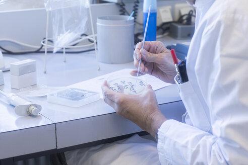 Laborärztin präpariert Probe - SGF02271