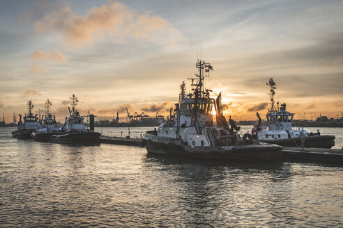 Germany, Hamburg, Altona, Neumuehlen, towboats in harbor at sunrise - KEB01186
