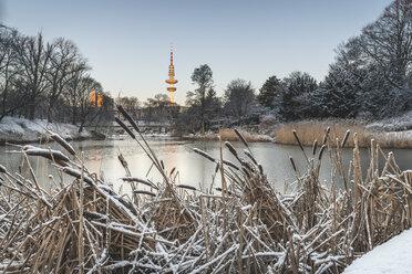 Germany, Hamburg, park Planten un Blomen at a winter morning - KEBF01201