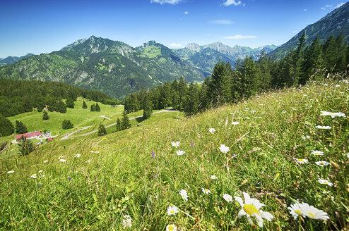 Blick vom Imberger Horn, Deutschland, Bayern, Oberallgäu, Hindelang - ALEF00102