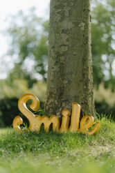 Smile sign leaning on tree trunk - KNSF05592