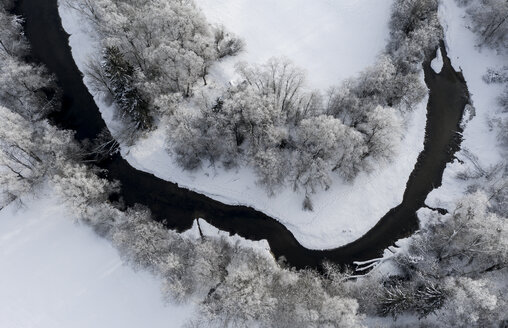 Tree at Loisach river, Aerial view of river loop in winter - LHF00601