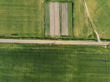 Aerial view of empty road amidst agricultural landscape during sunny day - CAVF60748