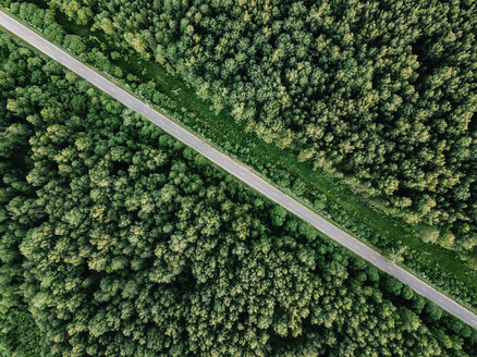 Aerial view of empty road amidst trees growing in woodland - CAVF60754