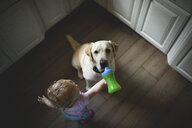 High angle view of baby girl feeding drink to dog while standing on hardwood floor in kitchen at home - CAVF61219