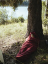 High angle view of female hiker napping in sleeping bag while reclining on tree trunk by lake at forest - CAVF61394