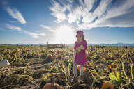 Full length of girl holding vegetables while standing at pumpkin patch against sky during sunny day - CAVF61565