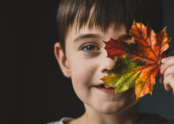 Close-up portrait of boy holding autumn leaf against colored background - CAVF61754