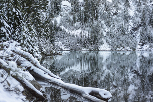 Scenic view of calm lake amidst snow covered trees in forest - CAVF61778