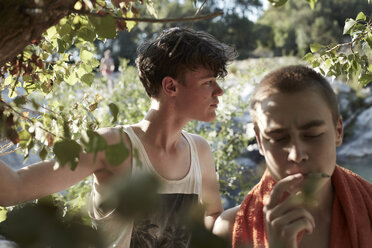 France, two teenage boys smoking cigarette in nature - AMEF00002