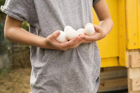 Deutschland, NRW, Garten, Huehnerstall, Detail, Junge haelt Eier in den Haenden - MFRF01240