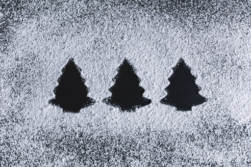 Icing sugar on black background, fir trees - STBF00247