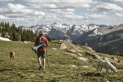 Rear view of male hiker with dogs hiking on mountain against cloudy sky during sunny day - CAVF62430