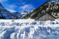 Austria, Tyrol, Tannheim Valley, barn in winter - THAF02485