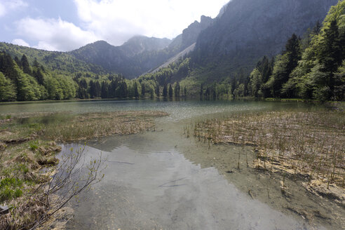 Germany, Upper Bavaria, Lake Frillensee - ZCF00696