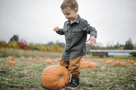 Full length of cute boy playing with pumpkin on field during autumn - CAVF62814