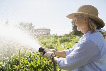 Senior woman watering vegetable garden with hose - HEROF28408