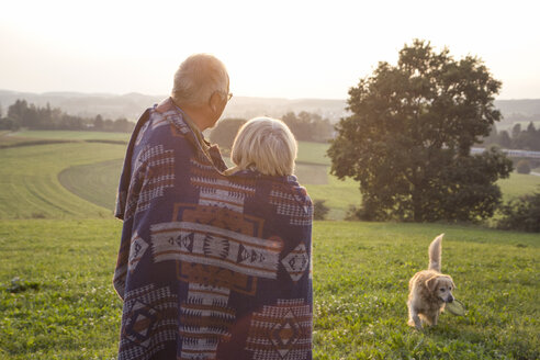 Back view of senior couple standing on a meadow at sunset watching their dog - MAMF00478