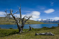 Chile, Patagonia, Torres del Paine National Park, glacier lake with mountains in background - RUNF01482