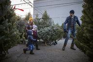 Family carrying Christmas tree at Christmas market - HEROF28548
