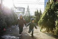Cute brother and sister running among Christmas trees at Christmas market - HEROF28563