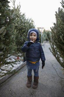 Portrait cute boy eating candy cane among Christmas trees at Christmas market - HEROF28581