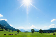 Sunny day in countryside, Sonthofen, Bayern, Germany - CUF49861