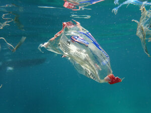 Plastic waste floating in the sea - GN01463