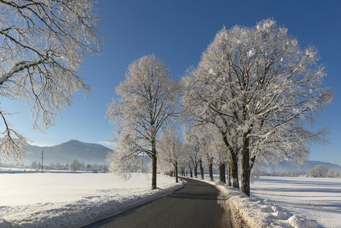 Germany, Upper Bavaria, Benediktbeuern, empty country road in winter - LHF00612